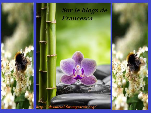francesca-blogs-2