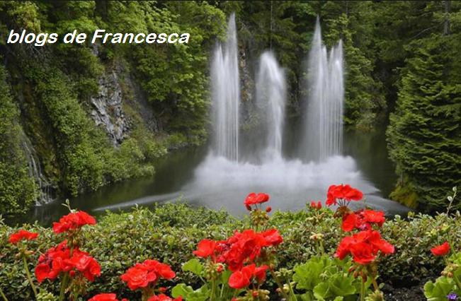 cascade-damour