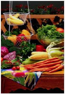 plantes alimentaires
