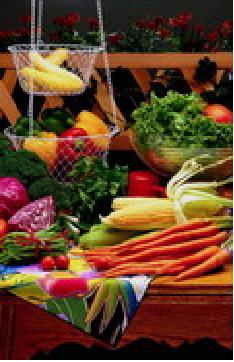 Harmonie aliments