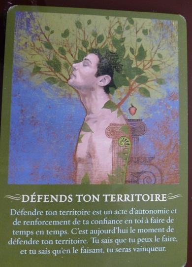 DEFENDS TON TERRITOIRE(yes)